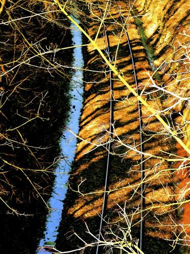 WK-08-Tiger Train Rails